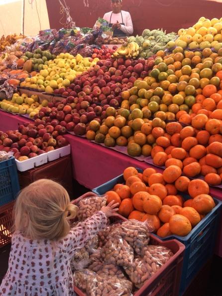 iola fruit